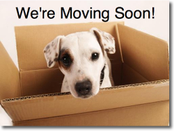 Austinrealestatetoday_moving
